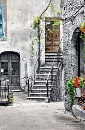 Charming alley with bicycle